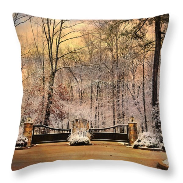 Entrance To Winter Throw Pillow by Jai Johnson