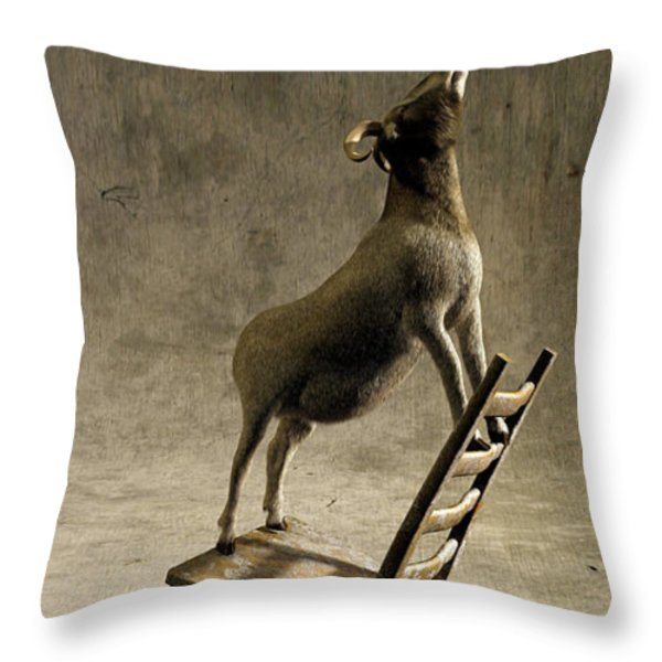 Equilibrium Throw Pillow by Cynthia Decker