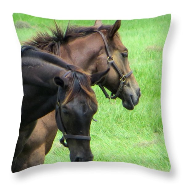 Equine Beauties Throw Pillow by Dorothy Menera