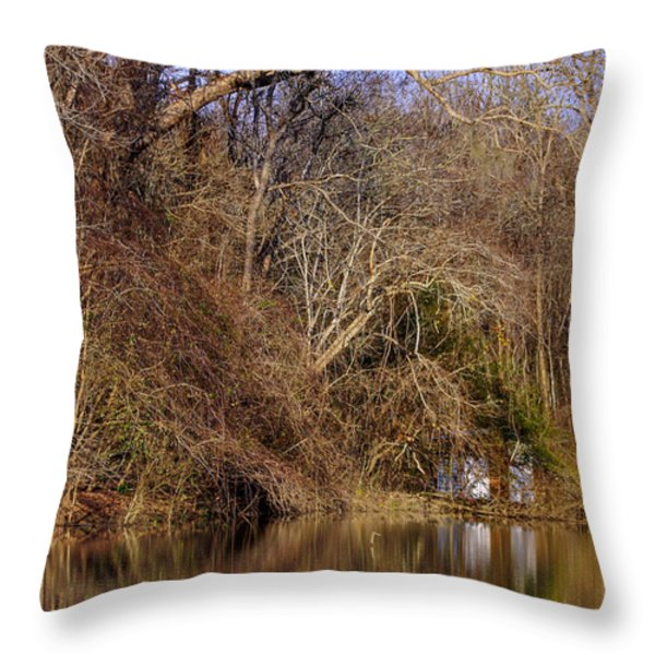 Escape From Reality  Throw Pillow by Debra Forand
