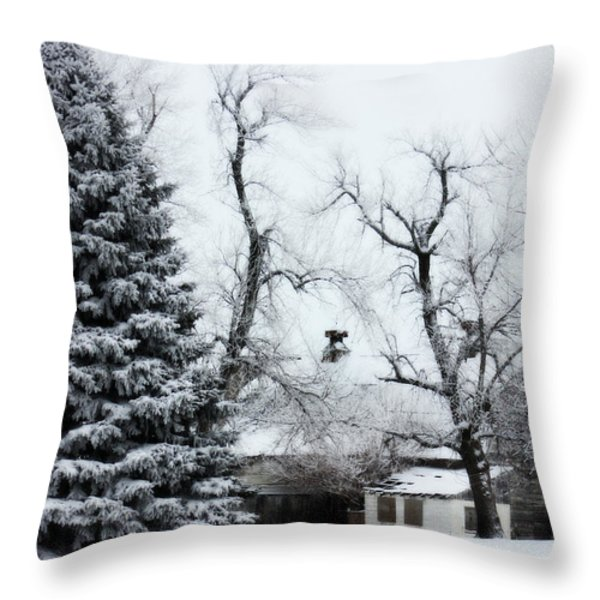Estherville Barn Throw Pillow by Julie Hamilton
