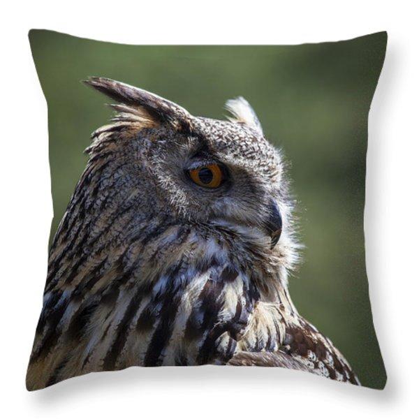 Eurasian Eagle-owl Throw Pillow by Garry Gay