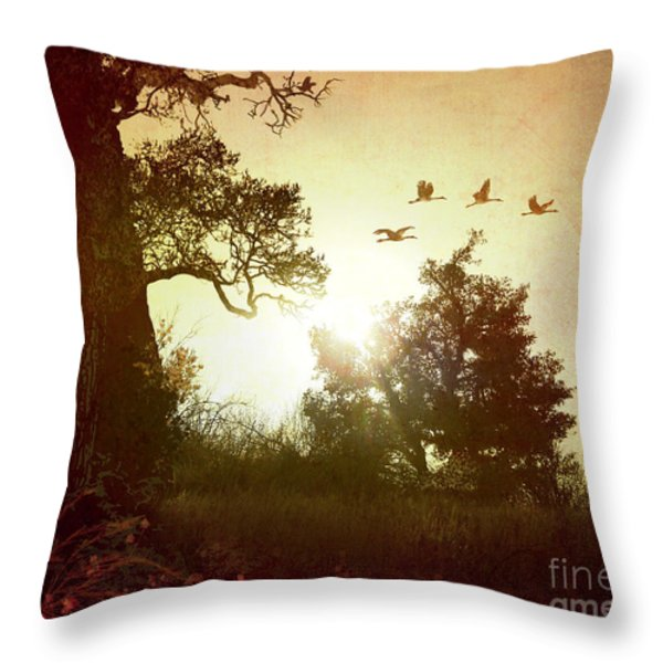 Evening Flying Geese Throw Pillow by Bedros Awak