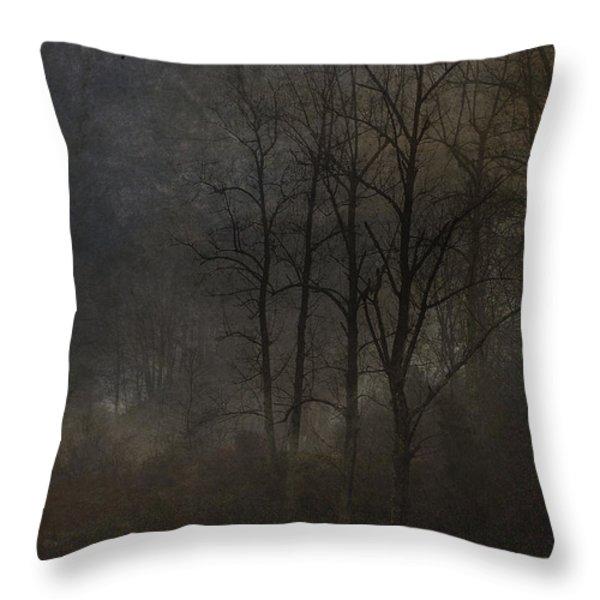 Evening Mist Throw Pillow by Ron Jones