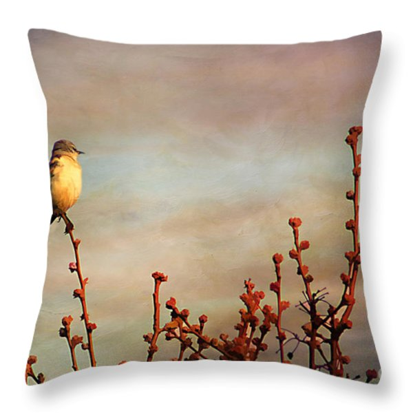 Evening Mocking Bird Throw Pillow by Darren Fisher