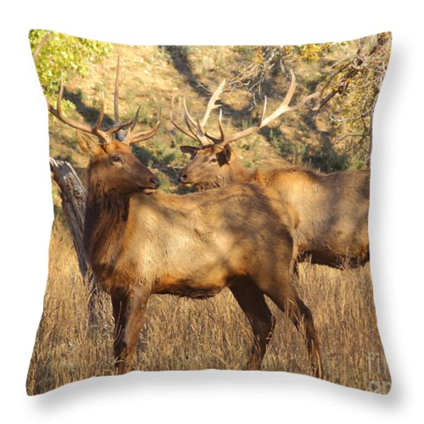 Evening Sets On The Elk Throw Pillow by Robert Frederick