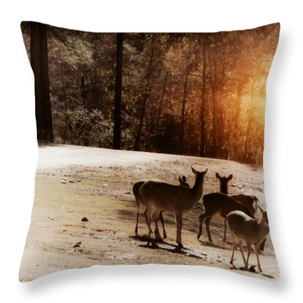 Evening Social  Throw Pillow by Kim Henderson