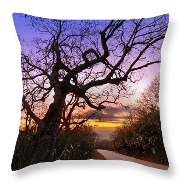 Evening Tree Throw Pillow by Debra and Dave Vanderlaan