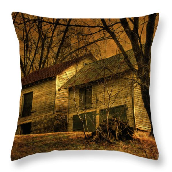 Evening Twilight Fades Away Throw Pillow by Lois Bryan