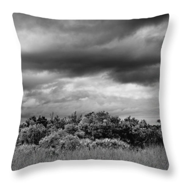Everglades Storm Bw Throw Pillow by Rudy Umans