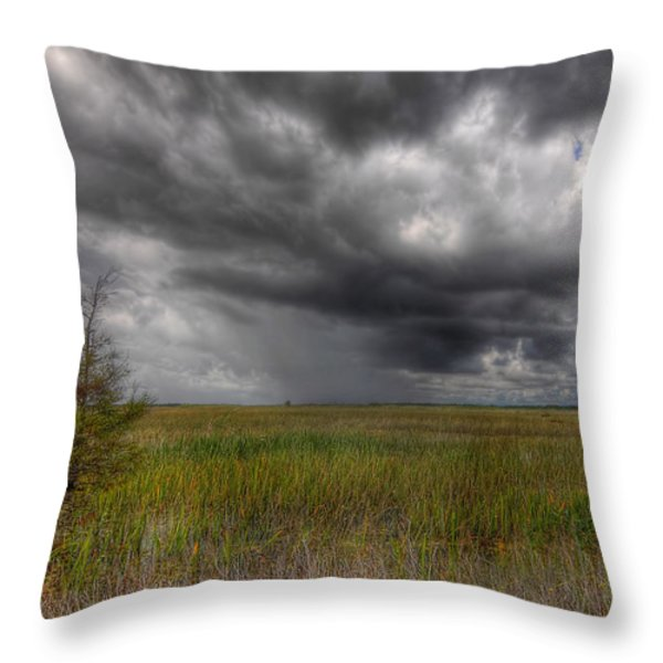 Everglades Storm Throw Pillow by Rudy Umans