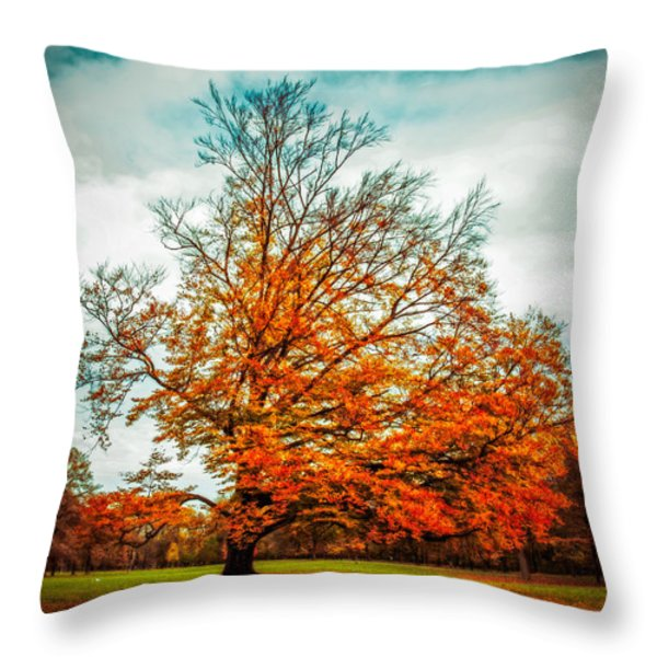 expecting the winter II Throw Pillow by Hannes Cmarits