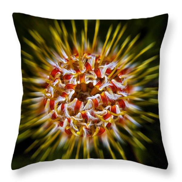 Explosion Throw Pillow by Dennis Reagan