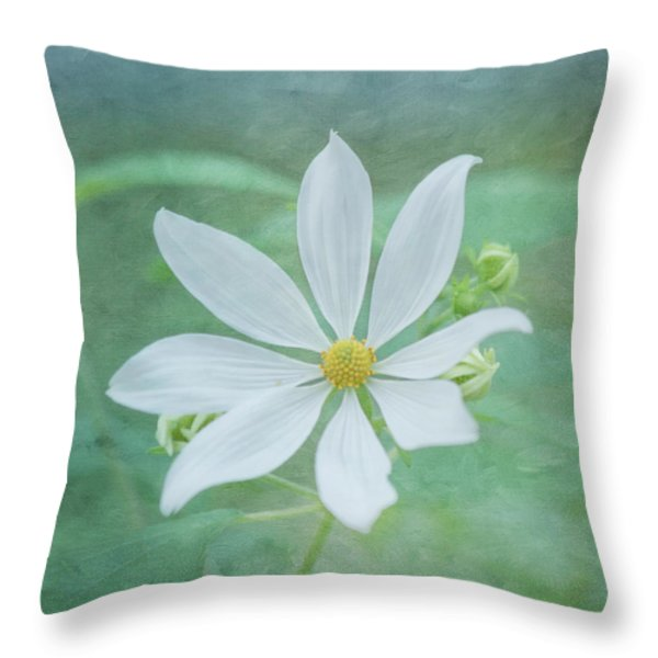 Expressions Throw Pillow by Kim Hojnacki