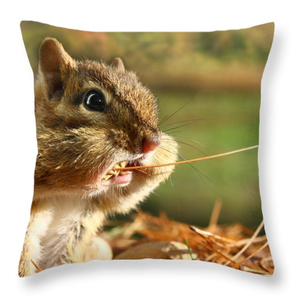 Extra Fiber Throw Pillow by Lori Deiter