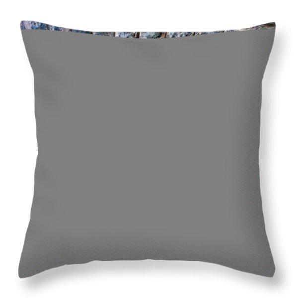 Eye Throw Pillow by Mary Amerman