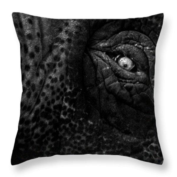 Eye of the Elephant Throw Pillow by Bob Orsillo