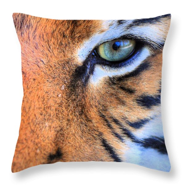 Eye of the Tiger Throw Pillow by JC Findley