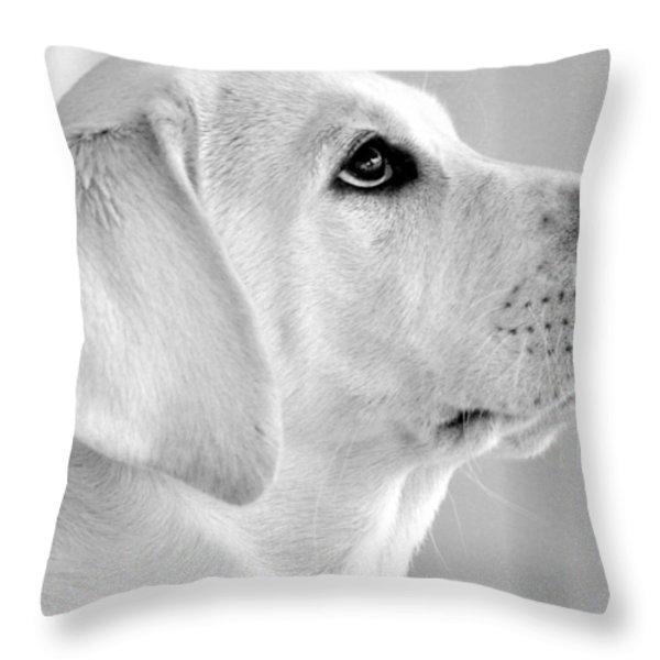 Eye on the Ball Throw Pillow by Kristina Deane