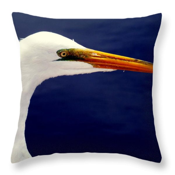 EYES of STEEL Throw Pillow by KAREN WILES