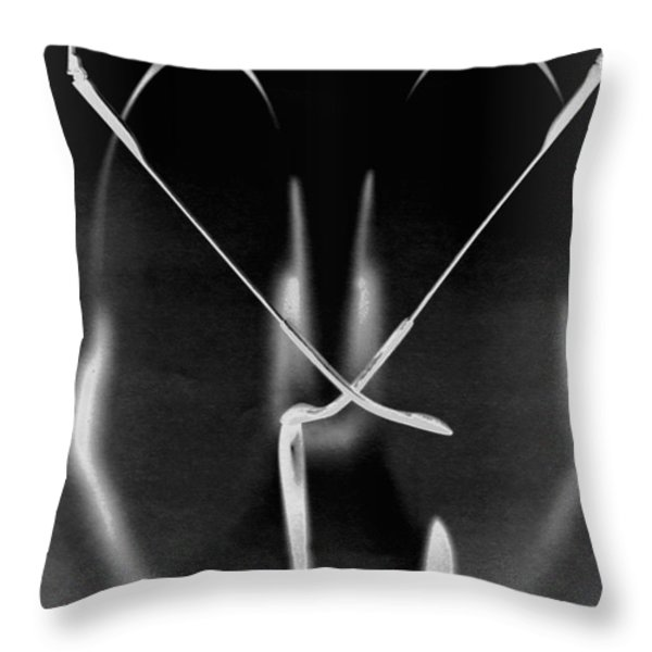 Face Behind The Lenses Throw Pillow by Floyd Menezes