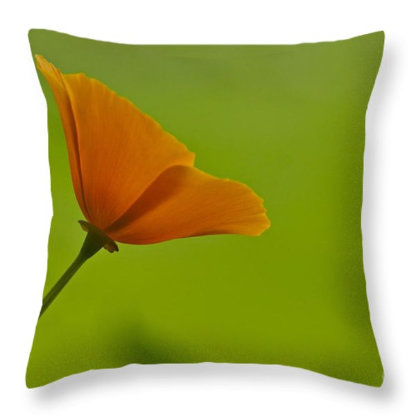 Face To The Sun Throw Pillow by Sean Griffin