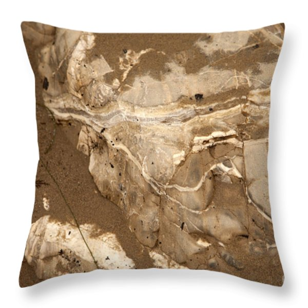 Facing The Past Throw Pillow by Amanda Barcon