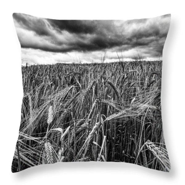 facing the storm Throw Pillow by John Farnan