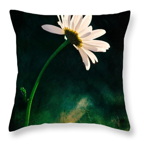 Facing The Sun Throw Pillow by Randi Grace Nilsberg