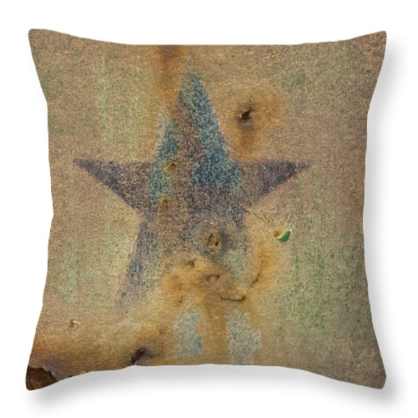 Faded Glory Throw Pillow by Christi Kraft
