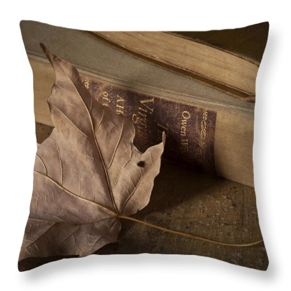Fading Throw Pillow by Amy Weiss