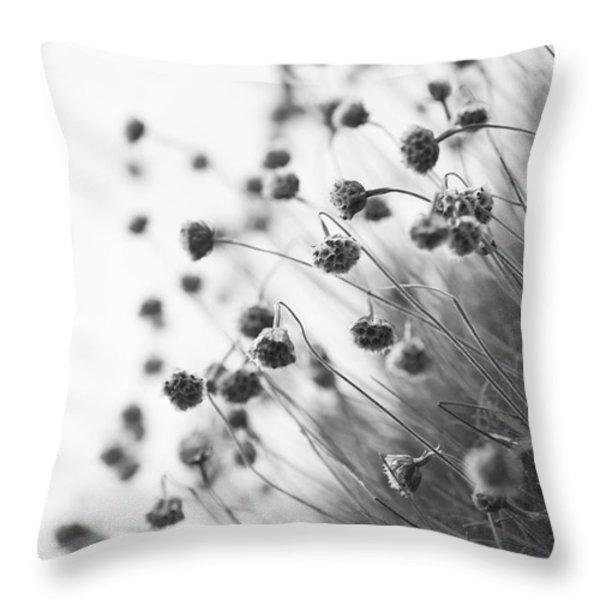 Fading Thrift Throw Pillow by Anne Gilbert