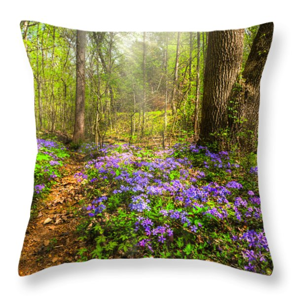 Fairies Forest Throw Pillow by Debra and Dave Vanderlaan