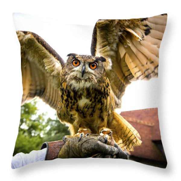 Falconers Owl Throw Pillow by Gabriela Wernicke-Marfo