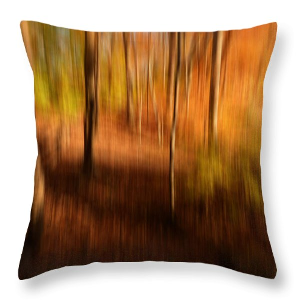 Fall Divine Throw Pillow by Lourry Legarde