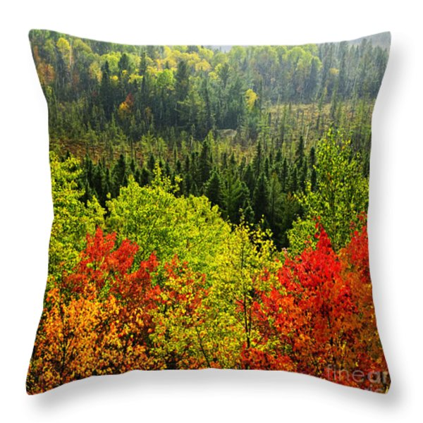 Fall forest rain storm Throw Pillow by Elena Elisseeva