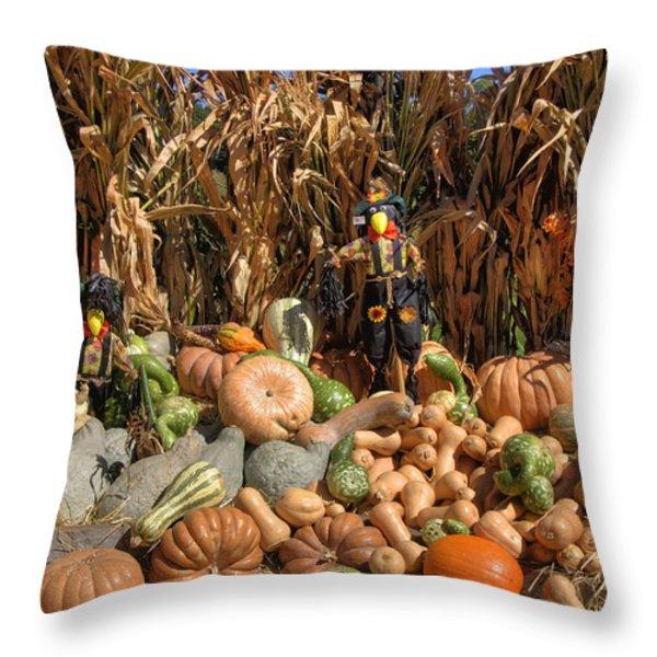 Fall Harvest Throw Pillow by Joann Vitali