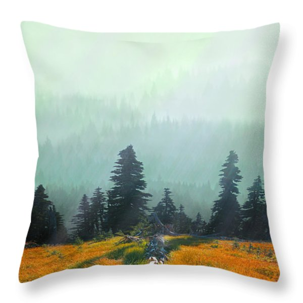Fall In The Northwest Throw Pillow by Jeff Burgess