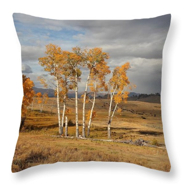 Fall in Yellowstone Throw Pillow by Daniel Behm