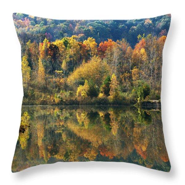Fall Kaleidoscope Throw Pillow by Christina Rollo