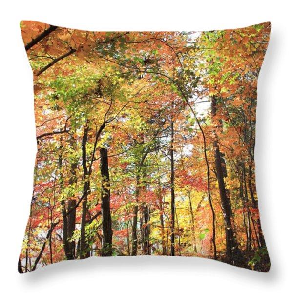 Fall Light Throw Pillow by AR Annahita