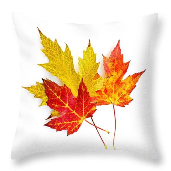 Fall Maple Leaves On White Throw Pillow by Elena Elisseeva
