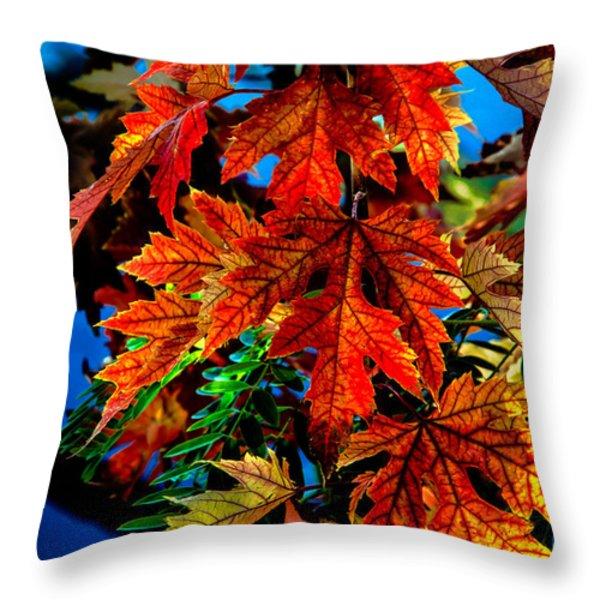 Fall Reds Throw Pillow by Robert Bales