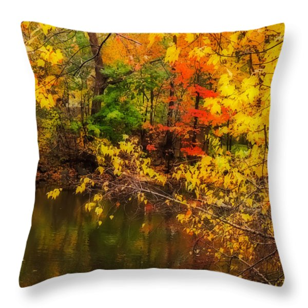 Fall Reflection Throw Pillow by Robert Mitchell