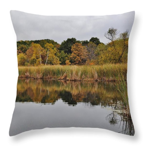 Fall Reflections 2 Throw Pillow by Todd and candice Dailey