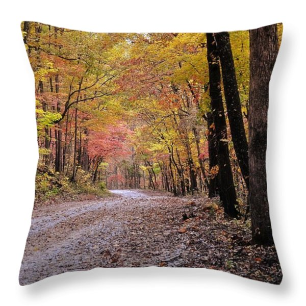 Fall Road Throw Pillow by Marty Koch
