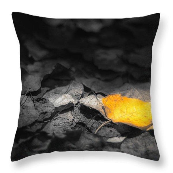 Fall Throw Pillow by Scott Norris