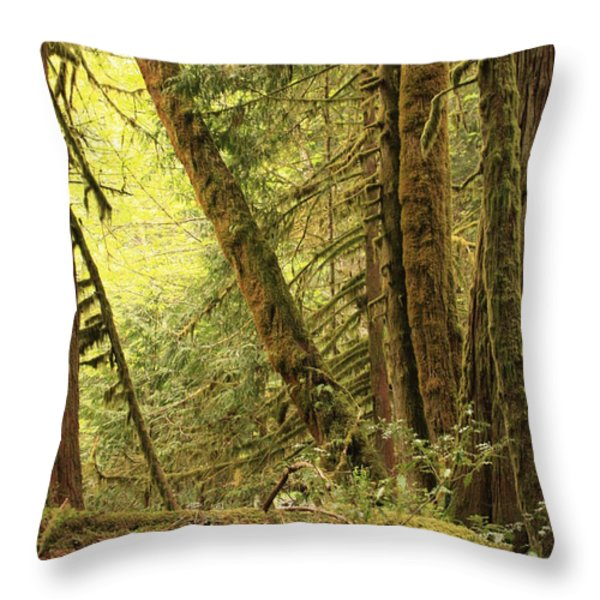 Falling Trees In The Rainforest Throw Pillow by Carol Groenen