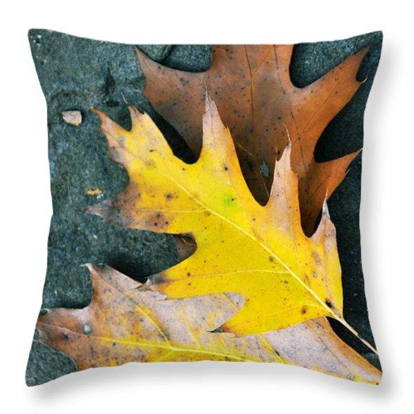 FALLS CARPET Throw Pillow by JAMART Photography