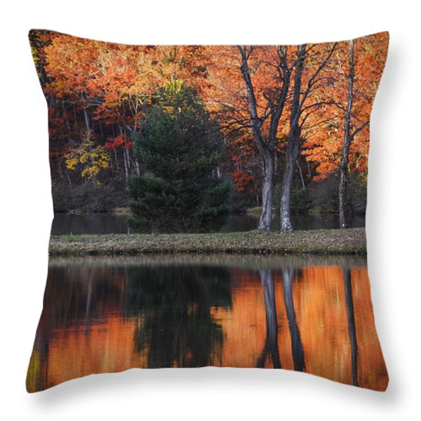 Fall's Natural Fire Throw Pillow by Lynn Bauer